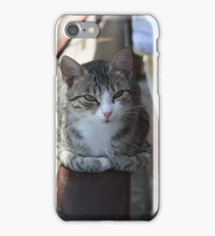 Cute Tabby Cat - Sitting On The Fence iPhone Case/Skin