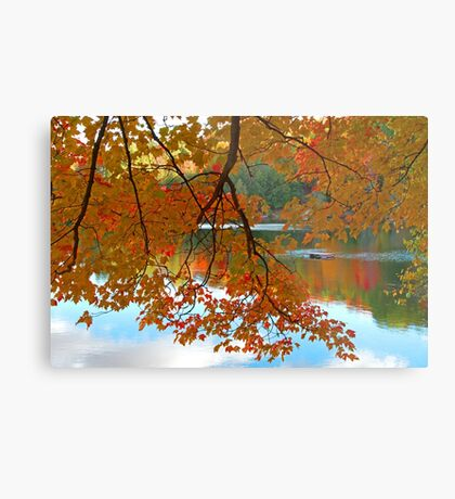 Fall in Quebec Metal Print