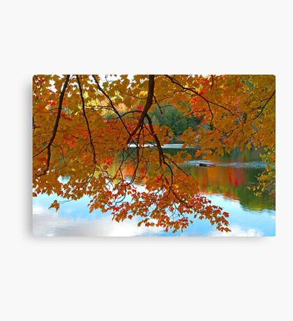 Fall in Quebec Canvas Print