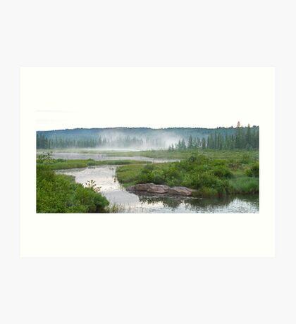 Algonquin Park - Costello Creek Art Print