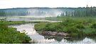 Algonquin Park - Costello Creek by Jim Cumming