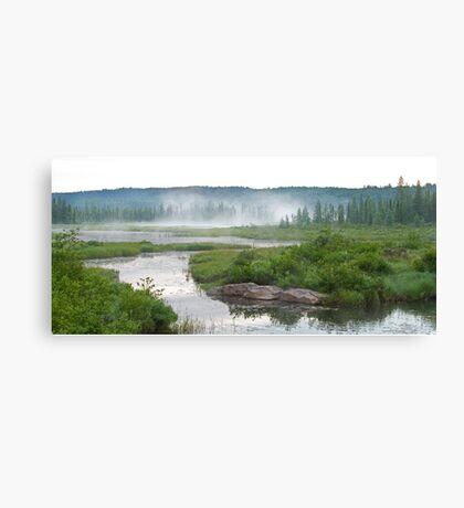 Algonquin Park - Costello Creek Canvas Print