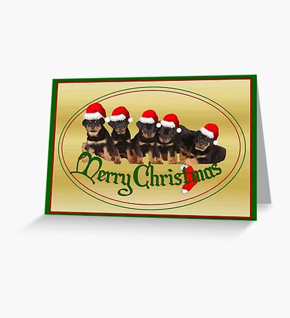 Vector Merry Christmas Rottweiler Puppies Greeting Card Greeting Card