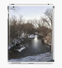 picture window iPad Case/Skin