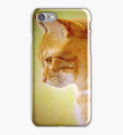 Tabby Cat Portrait iPhone Case/Skin