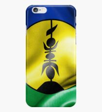 New Caledonia Flag iPhone 6 Case