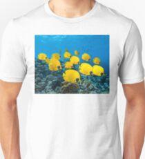 Reef Butterflies T-Shirt