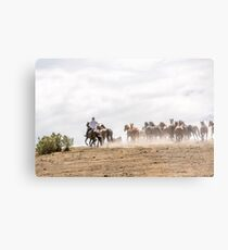 Bringing in the horses Metal Print