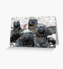 Marine Iguanas and a Lava Lizard Greeting Card