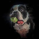Life is a Ball, Lets Play! by DHParsons