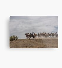 Bringing up the horses Metal Print