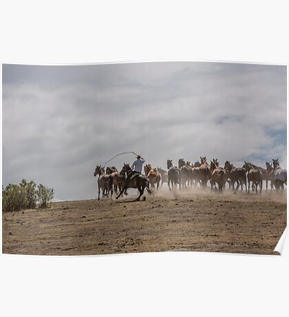 Bringing up the horses Poster