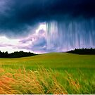 Storm Over Fields by domediart