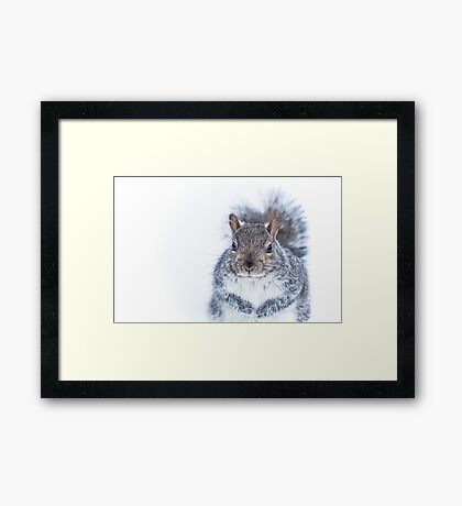 Portrait of a Nutcase Framed Print
