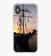 One and All at Sunset iPhone Case
