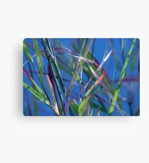 Blue Lagoon - Abstract Canvas Print