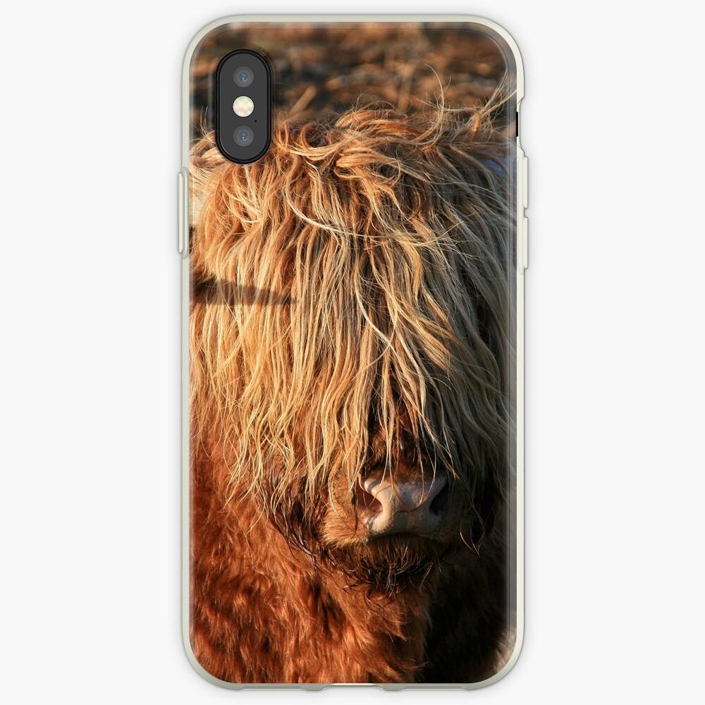 Highland Cattle - Hochlandkuh - Hochländer iPhone-Hülle & Cover