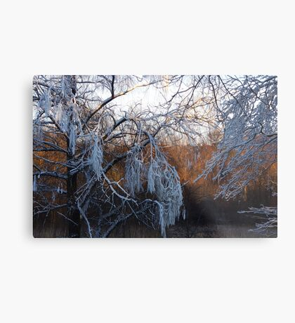 January riverside Metal Print