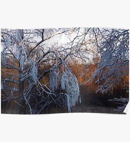 January riverside Poster