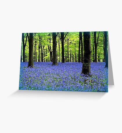 Haze Of Blue - Bluebell Wood Dorset Greeting Card