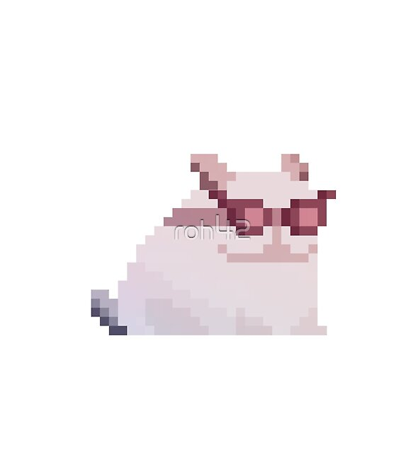 cat with funny glasses by roh42