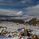 Tongariro National Park by Linda Cutche