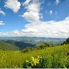 Blue Ridge Parkway 1 by Sunshinesmile83