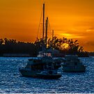 Chasing the Sun....Hamilton Harbour BERMUDA.... by buddybetsy