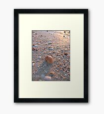Macro Beach Reflections Framed Print
