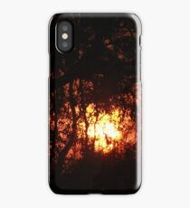 Fiery Sunset Through The Eucalypts iPhone Case