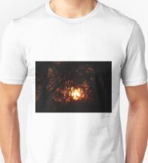 Fiery Sunset Through The Eucalypts T-Shirt