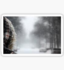 First Snowstorm Sticker
