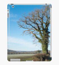 Derbyshire Countryside Winter England  iPad Case/Skin