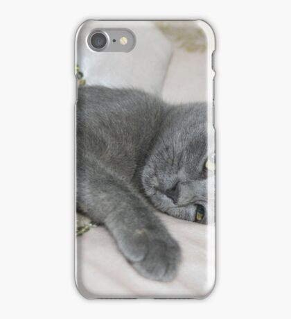 Grey Kitten Relaxed On A Bed iPhone Case/Skin