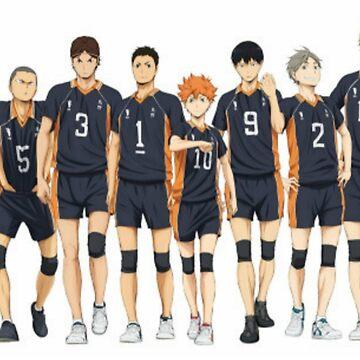 Karasuno volleball team by roxane42