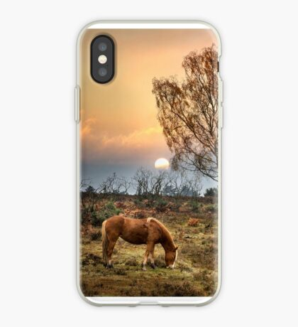 New Forest Ponies iPhone Case