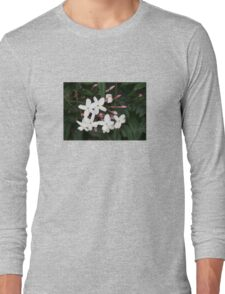 Delicate White Jasmine Blossom with Green Background Long Sleeve T-Shirt