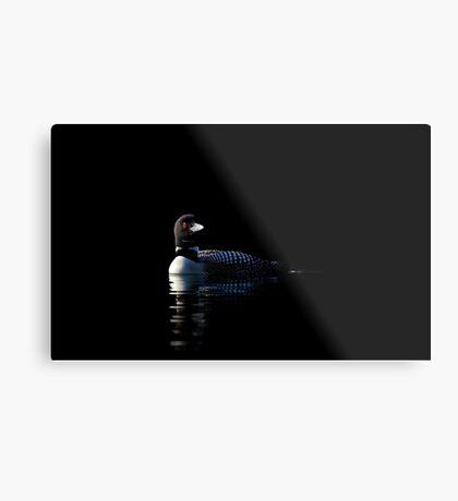 Common Loon on black water Metal Print