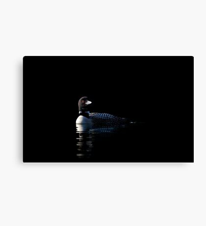 Common Loon on black water Canvas Print