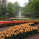 Tulips in the Garden by neon-gobi