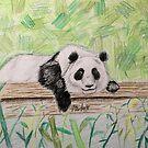 Panda by Marika Schulze