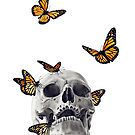 Skull with Monarch Butterflies by Jessica Bone