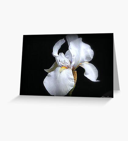 Pond Iris Greeting Card