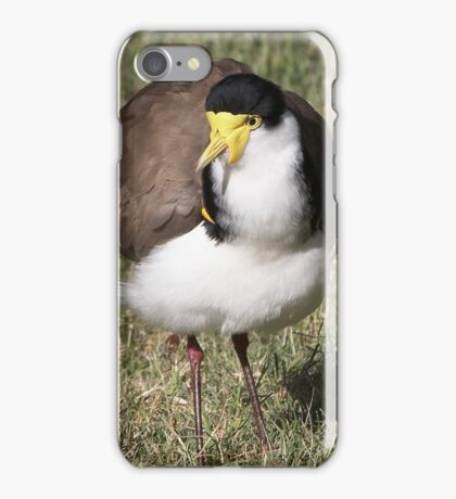 """Masked Lapwing (Spur-winged Plover) ~ """"Dagger Drawn""""  iPhone Case/Skin"""