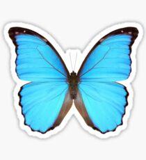 Blauer Morpho-Schmetterling Sticker
