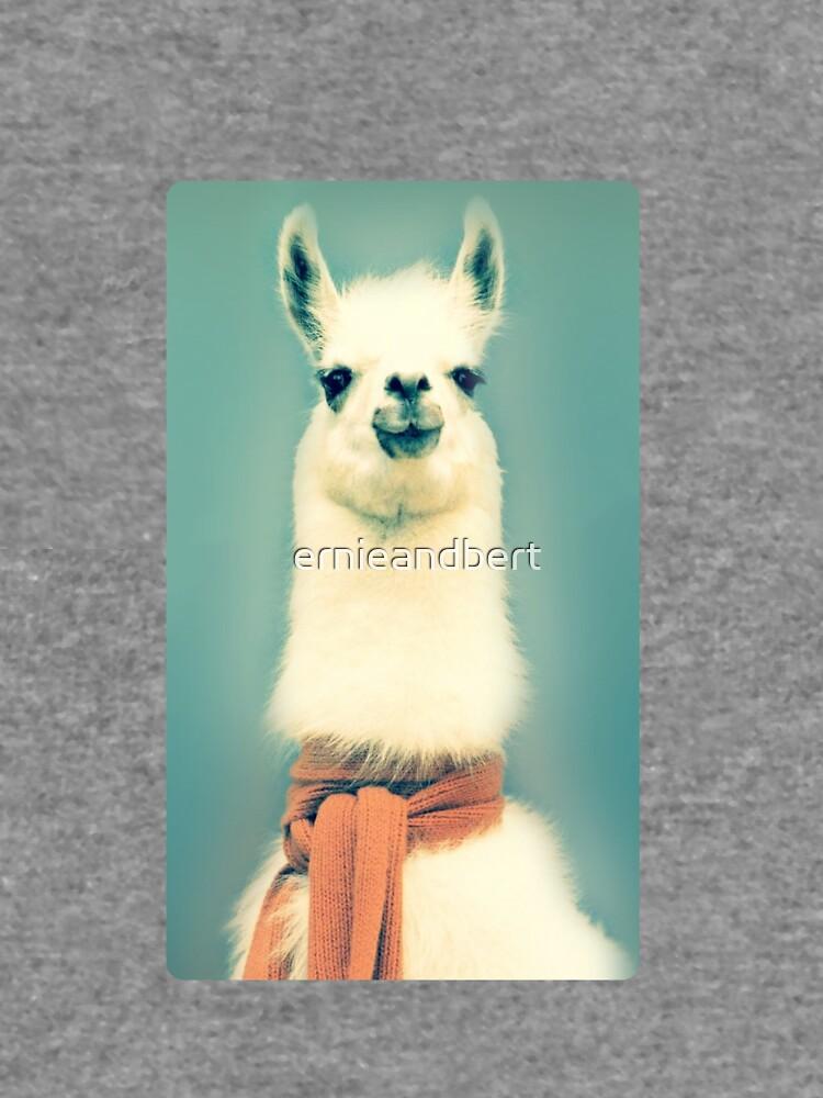 Llama de ernieandbert
