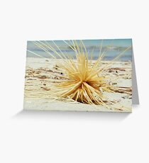 Spinifex Greeting Card