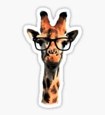 Hipster Giraffe Sticker