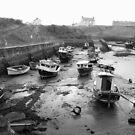 Seaton Sluice Harbour by Nigel Tinlin