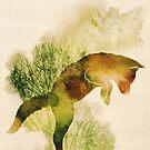 Spring Fox by Sybille Sterk